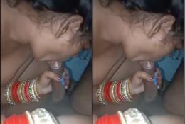 Newly married punjabi girl blowjob
