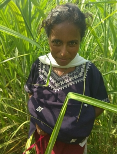 Village Bhabhi Fucking In Khet